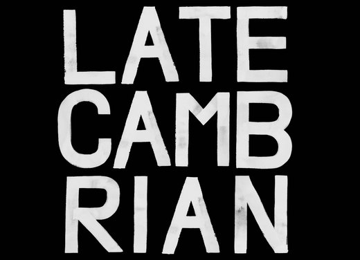 Portrait of Late Cambrian