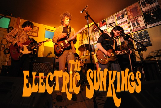 Portrait of The Electric Sunkings
