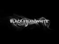 Portrait of Black Swan White