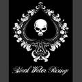 Portrait of Black Water Rising
